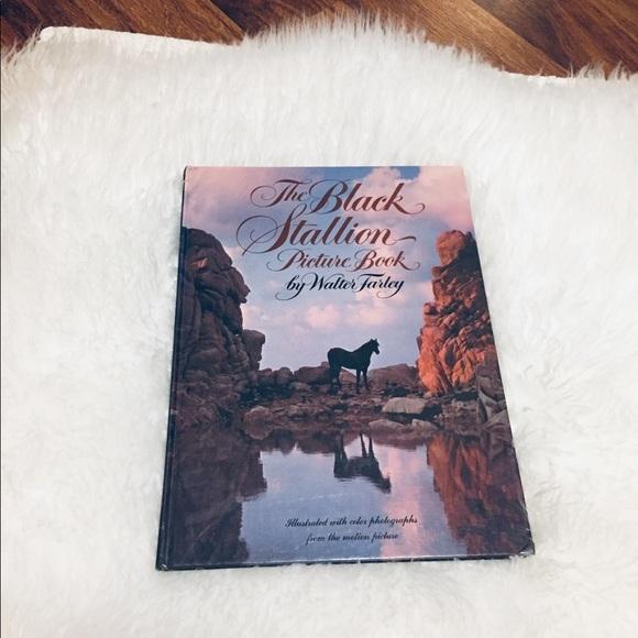 Vintage Other - 🦋2/$10 3/$15 4/$18 5/$20 70s Black Stallion Book